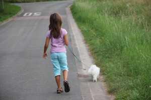 Kinder und Haustiere – Wir sind auf den Hund gekommen