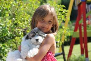 Stolze Besitzerin eines Hundes