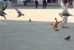 Elch Palle fliegt mit Tauben