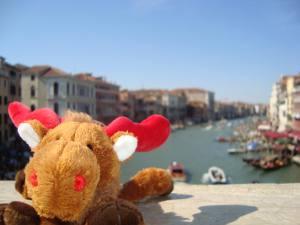 Elch Palle auf einer Brücke in Venedig