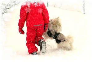 Kind mit Hund beim Spaziergang im Schnee