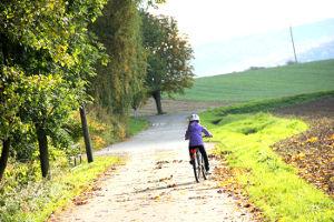 Mädchen auf dem Fahrrad fährt auf einem herbstlichen Feldweg