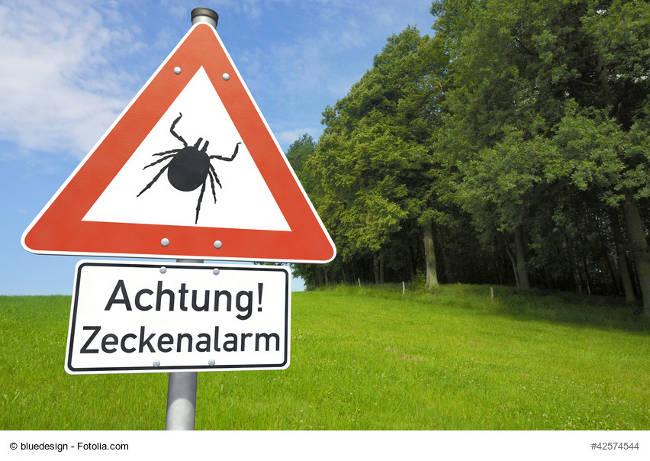 Zecken-Warnschild vor Wiese und Wald